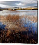 Loch Mealt Canvas Print
