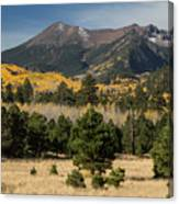 Lockett Meadow Autumn Canvas Print