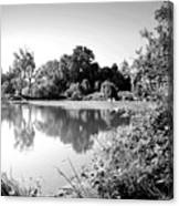 Lodi Pig Lake Reflections B And W Canvas Print