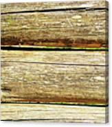 Log Files Canvas Print