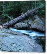 Log Over Deep Creek Canvas Print