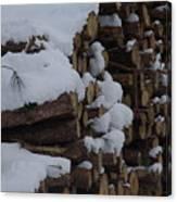 Log Row Canvas Print