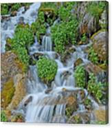 Logan Canyon Cascade Canvas Print