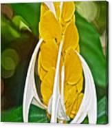Lollipop Flower In Bourbon Resort Gardens Near Iguazu Falls National Park-brazil  Canvas Print
