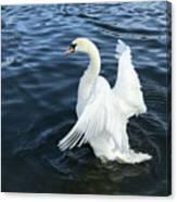London Swan Canvas Print