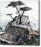 Lone California Tree Canvas Print