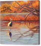 Lone Crane Still Water Canvas Print
