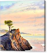 Lone Cypress Tree Pebble Beach Canvas Print