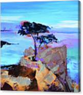 Lone Cypress - California Canvas Print