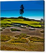 Lone Fir - Hole #15 At Chambers Bay Canvas Print