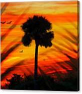 Lone Palm Florida Canvas Print