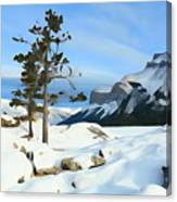 Lone Pines On Lakeshore Canvas Print