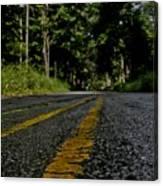 Lone Road Canvas Print