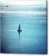 Lone Sailboat At Dawn Canvas Print