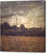 Lone Telephone Pole In Autumn Field Canvas Print