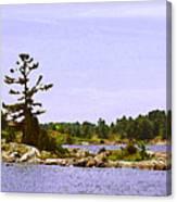 Lone Tree 3 Db  Canvas Print