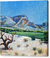 Lone Tree At The Ghost Ranch Canvas Print