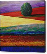 Lone Tree In Flower Fields Of Provence Canvas Print