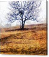 Lone Tree On Hill In Winter Canvas Print