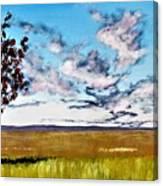 Lonely Autumn Tree Canvas Print