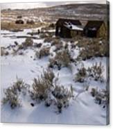 Lonely Bodie Canvas Print