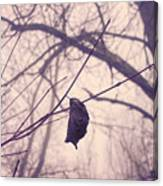 Lonely Winter Leaf Canvas Print