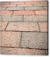 Long Bricked Walks Canvas Print