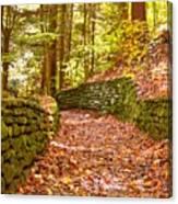Long Fall Walk  Canvas Print