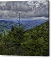 Long Misty Days Canvas Print