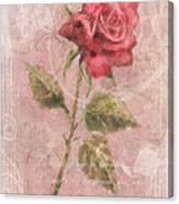 Long Stemmed Rose Canvas Print