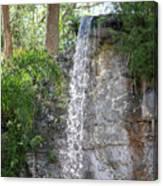 Long Waterfall Drop Canvas Print