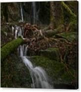 Longexposure Water Canvas Print