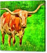 Longhorn 2 - Pa Canvas Print