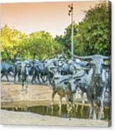 Longhorn Cattle Sculpture In Pioneer Plaza, Dallas Tx Canvas Print