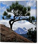 Longs Peak Framed Canvas Print
