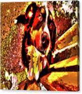 Lonnie, 2016 Poster Effec 1a Canvas Print