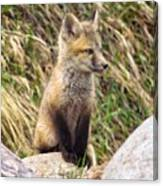 Look-out Canvas Print