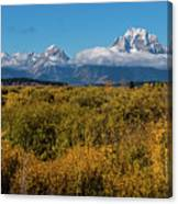 Looking Across Willow Flats To Mt Moran Canvas Print
