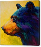 Looking On II - Black Bear Canvas Print