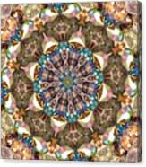 Looking Through The Kaleidoscope Canvas Print