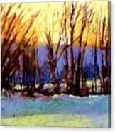 Looking Westword Canvas Print
