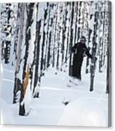 Lookout Trees Canvas Print
