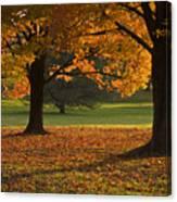 Loose Park Maple Trees Canvas Print