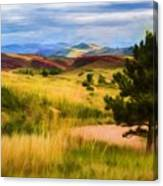 Lory State Park Impression Canvas Print