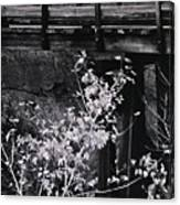 Lost Bridge Canvas Print