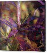 Lost Leaves Decorated In Purple 6003 Ldp_2 Canvas Print