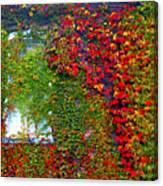 Lost Window Canvas Print