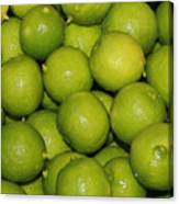 Lots Of Limes Canvas Print