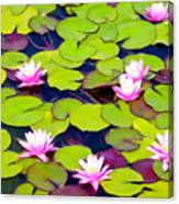 Lotus Blossom Lily Pads Canvas Print