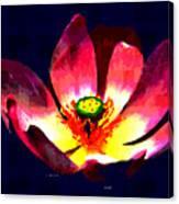 Lotus Blue Canvas Print